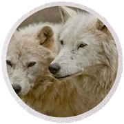 Arctic Wolf Pictures 1174 Round Beach Towel