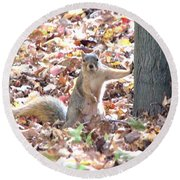 Are You Looking At Me ? Round Beach Towel
