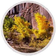 Arizona Autumn Colors Round Beach Towel