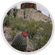 Arizona Icons Round Beach Towel
