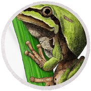 Arizona Tree Frog Round Beach Towel