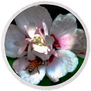 Artistic Shades Of Light And Pollinating Bee Round Beach Towel