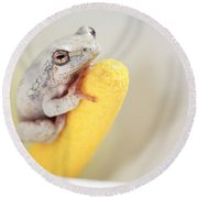 Arum Lily Frog Round Beach Towel