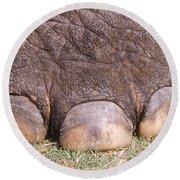Asian Elephant Foot Round Beach Towel