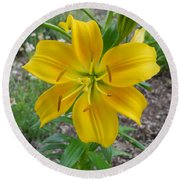 Asiatic Lily 2 Round Beach Towel
