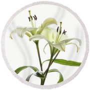Asiatic Lily Flowers Against White Round Beach Towel