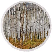 Aspen And Ferns Round Beach Towel