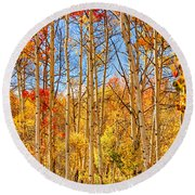 Aspen Fall Foliage Portrait Red Gold And Yellow  Round Beach Towel