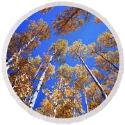Aspen Tree Tops Round Beach Towel
