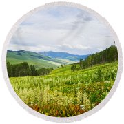 Aspen Trees And Wildflowers Round Beach Towel