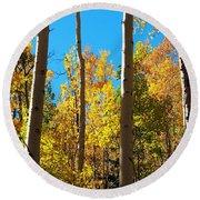 Aspen Trees In Fall Round Beach Towel