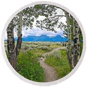Aspen Trees On Trail To Jackson Lake At Willow Flats Overlook In Grand Teton National Park-wyoming  Round Beach Towel