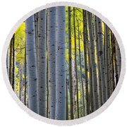 Aspen Trunks Round Beach Towel by Inge Johnsson