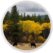 Aspens And Cows Round Beach Towel