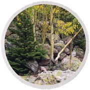 Aspens From Rocks Round Beach Towel