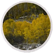 Aspens In Snow Round Beach Towel