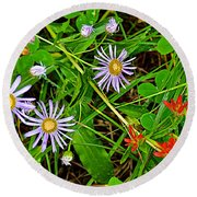 Asters And Scarlet Paintbrush On Swan Lake Trail In Grand Teton National Park-wyoming  Round Beach Towel