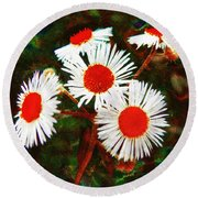 Asters Bright And Bold Round Beach Towel