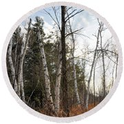 At The Edge Of The Wetland Round Beach Towel