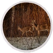 At The Edge Of The Woods Round Beach Towel