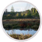 At The Wetlands Round Beach Towel