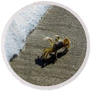 Atlantic Ghost Crab Round Beach Towel