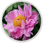 Attractive Pink Peony Round Beach Towel