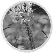 August Garden Round Beach Towel