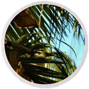 Auku'u The Black Crowned Night Heron Round Beach Towel