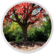 Autumn Ablaze Round Beach Towel