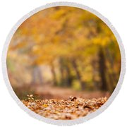 Autumn At Great Falls Round Beach Towel