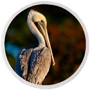 Autumn Brown Pelican Round Beach Towel