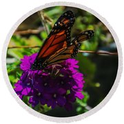 Autumn Butterfly Round Beach Towel