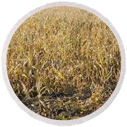 Autumn Cattle Silage Corn In Maine Round Beach Towel by Keith Webber Jr