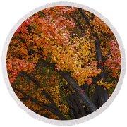 Autumn Color Round Beach Towel