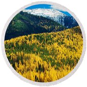 Autumn Color Larch Trees In Pine Tree Round Beach Towel