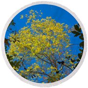 Autumn Colors Against The Sky Round Beach Towel