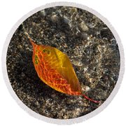 Autumn Colors And Playful Sunlight Patterns - Cherry Leaf Round Beach Towel