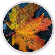 Autumn Colors Round Beach Towel