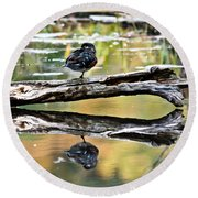 Autumn Duck Reflections Round Beach Towel