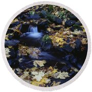 Autumn Fall Colors Starvation Creek State Park Round Beach Towel