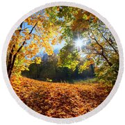 Autumn Fall Landscape In Forest Round Beach Towel