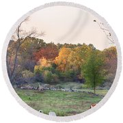 Autumn Forage Before Winter's Arrival Round Beach Towel
