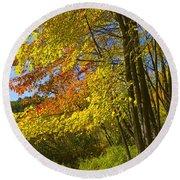 Autumn Forest Scene In West Michigan Round Beach Towel