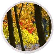 Autumn Forest Scene Round Beach Towel