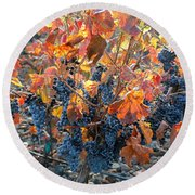 Autumn Grapes Round Beach Towel