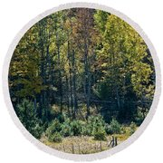 Autumn Grazing Round Beach Towel