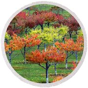 Autumn Hillside Orchard Round Beach Towel