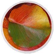 Autumn Leaf Round Beach Towel