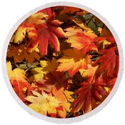 Autumn Leaves 09 Round Beach Towel